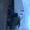 Камаз-5410, отличный тягач #96071