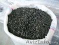 Продам семечки маслиничные оптом от 500тн