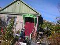 Дача садоводство Сосновый бор, 50 метров от трассы! - Изображение #4, Объявление #1600778