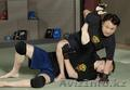Индивидуальные занятия по системе ближнего боя Вин Чун (липкие руки) - Изображение #3, Объявление #1628942